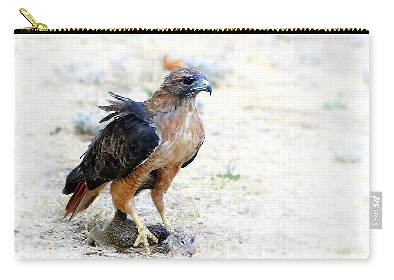 Animal Carry-all Pouch featuring the photograph Hungry Red Teiled Hawk by Henrik Lehnerer