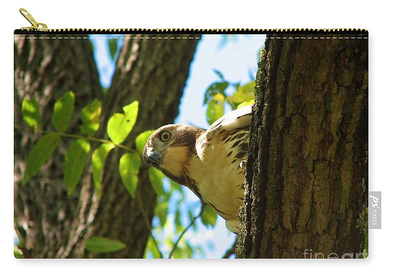 Bird Carry-all Pouch featuring the photograph Hunter by Art Dingo