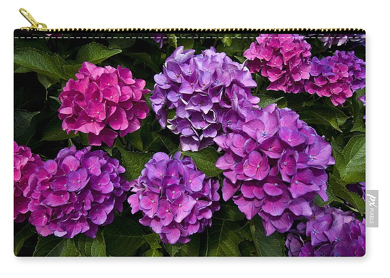 Lavender Carry-all Pouch featuring the photograph Hydrangeas by Sally Weigand