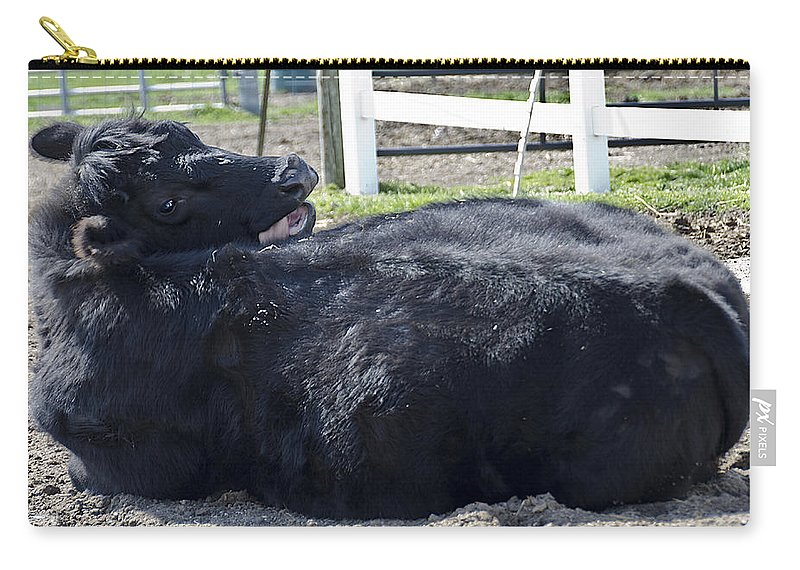 United_states Carry-all Pouch featuring the photograph I Am Sexy And I Know It by LeeAnn McLaneGoetz McLaneGoetzStudioLLCcom