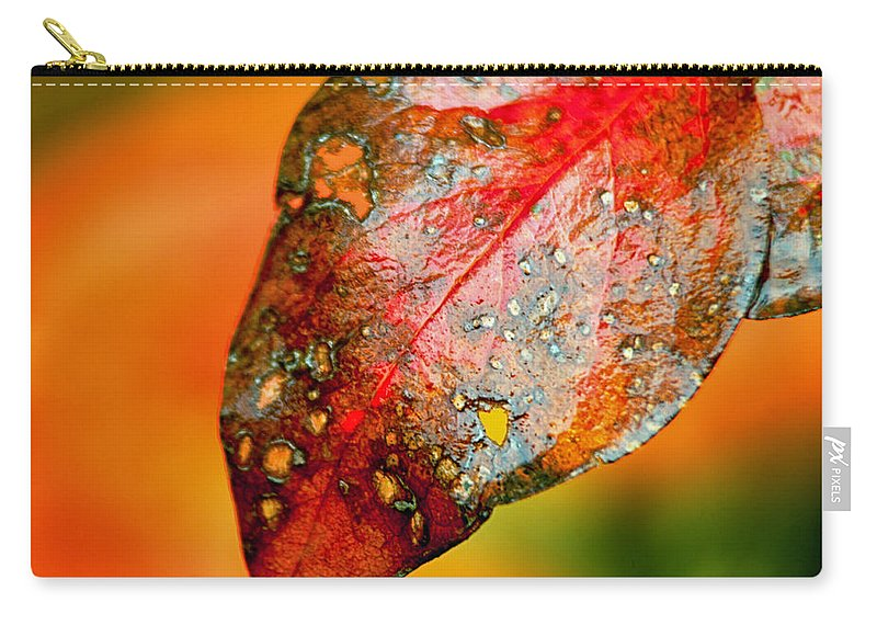 Leaf Carry-all Pouch featuring the photograph I Love Fall by Lauri Novak