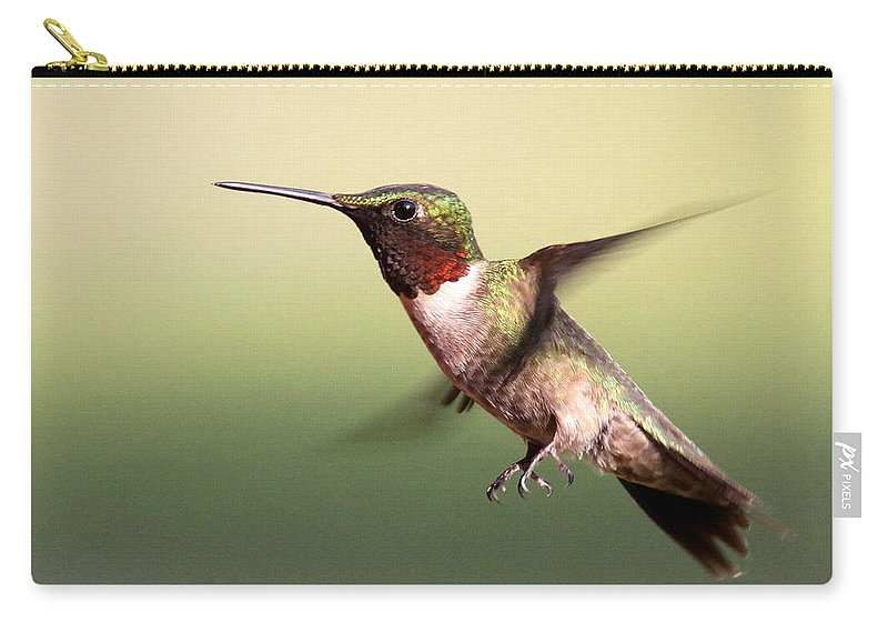 Hummingbird Carry-all Pouch featuring the photograph I Need A Limb by Travis Truelove
