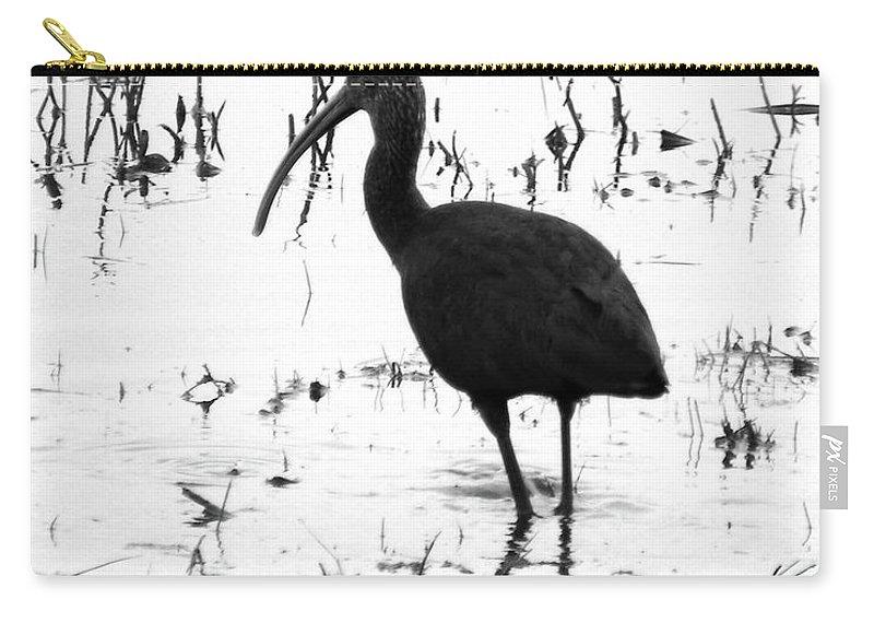 Ibis Carry-all Pouch featuring the photograph Ibis Pintail Drive Cameron Prairie Nwr by Lizi Beard-Ward