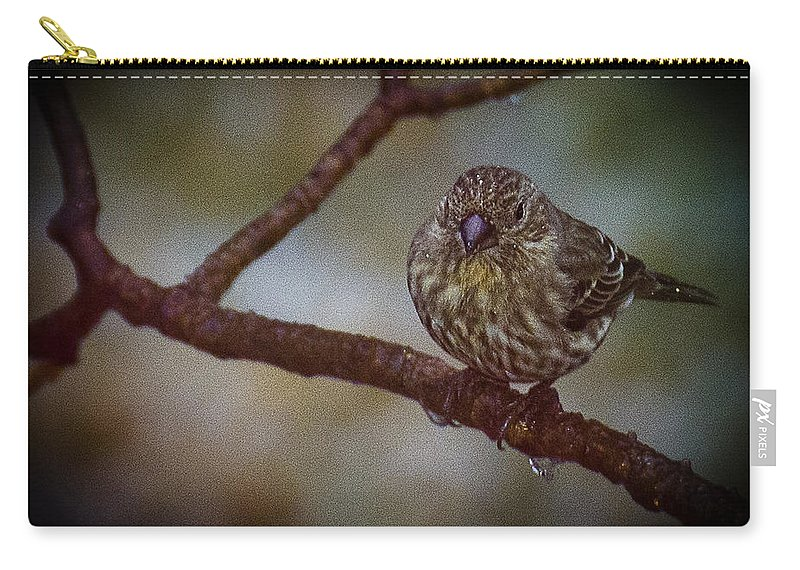 Usa Carry-all Pouch featuring the photograph Ice Droplet Bird by LeeAnn McLaneGoetz McLaneGoetzStudioLLCcom
