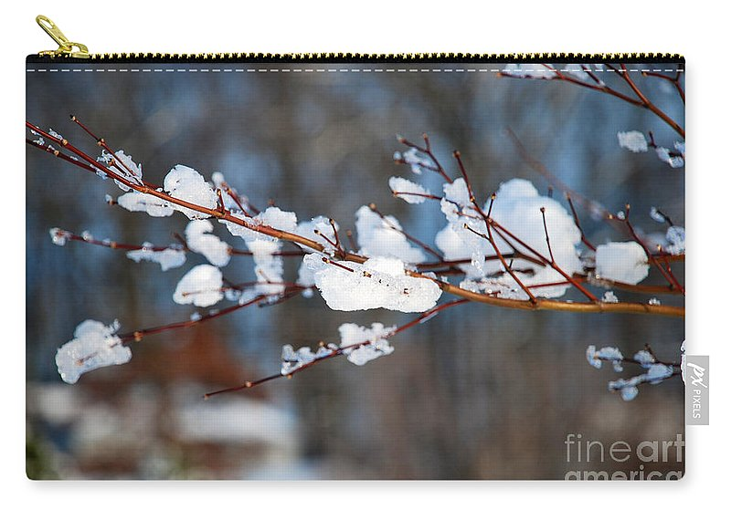 Winter Carry-all Pouch featuring the photograph Ice On A Branch by Mark Dodd