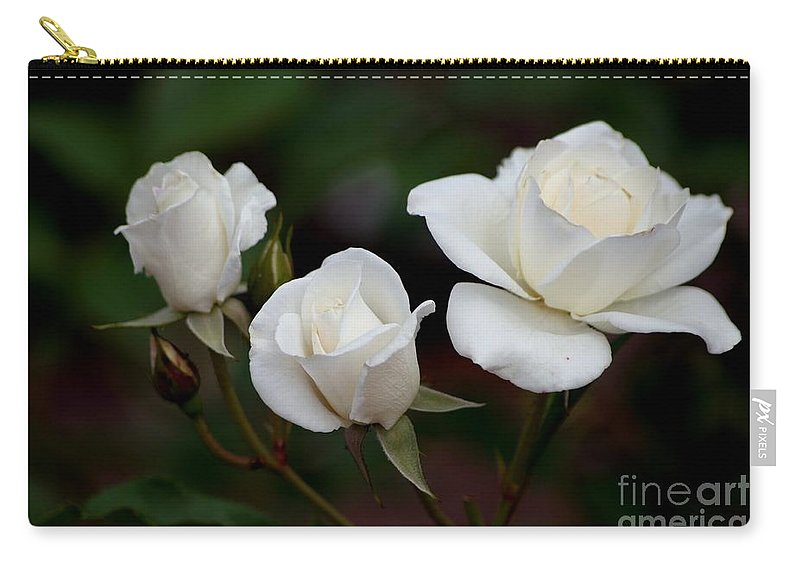 Roses Carry-all Pouch featuring the photograph Iceberg Roses by Living Color Photography Lorraine Lynch