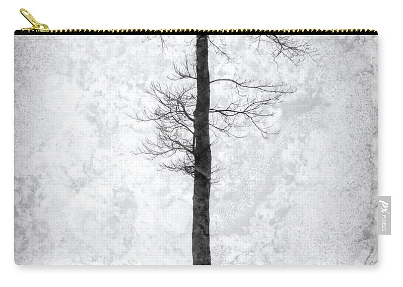 Picnic Table Carry-all Pouch featuring the photograph Icing On The Lake by John Stephens