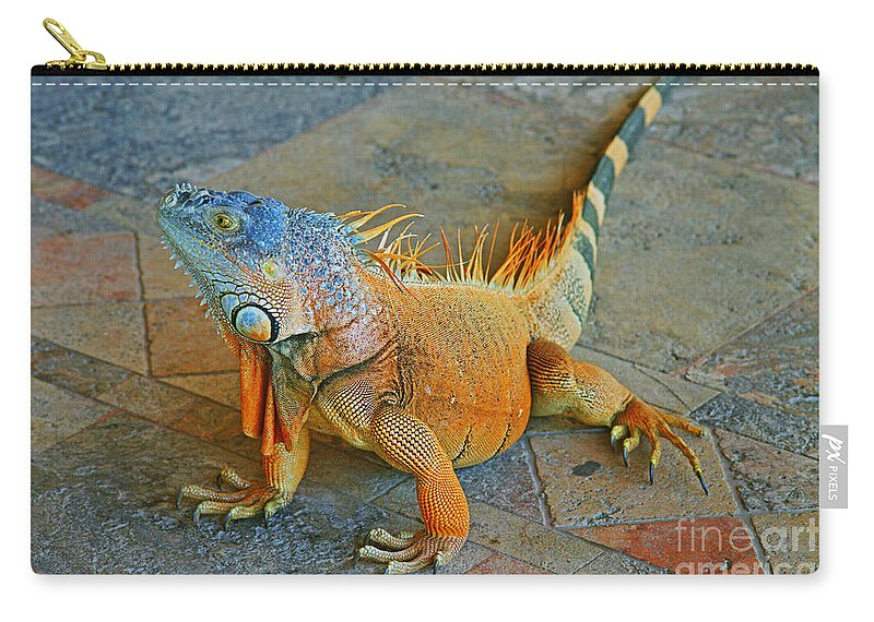Iguanas Carry-all Pouch featuring the photograph Iguana At The Restaurant by Randy Harris