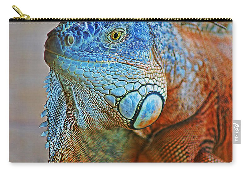 Iguanas Carry-all Pouch featuring the photograph Iguana Close-up by Randy Harris