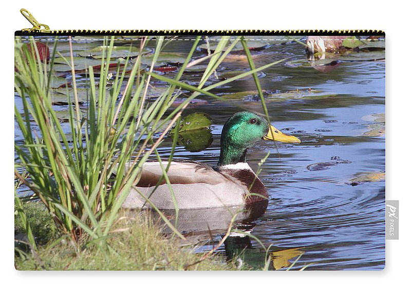 Mallard Carry-all Pouch featuring the photograph I'm No Decoy by Travis Truelove