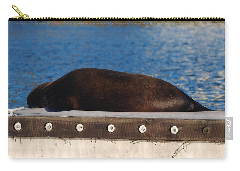 Seal Carry-all Pouch featuring the photograph Im Working Out by Teri Schuster