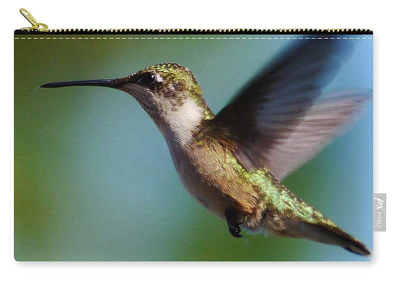 Ruby-throated Hummingbird Carry-all Pouch featuring the photograph In Flight by Anthony Walker Sr