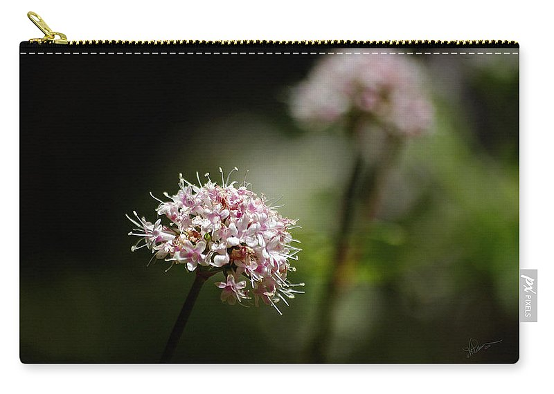Photograph Carry-all Pouch featuring the photograph In The Quiet Of The Morning by Vicki Pelham