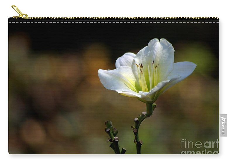 Flowers Carry-all Pouch featuring the photograph In The Spot Light by Living Color Photography Lorraine Lynch