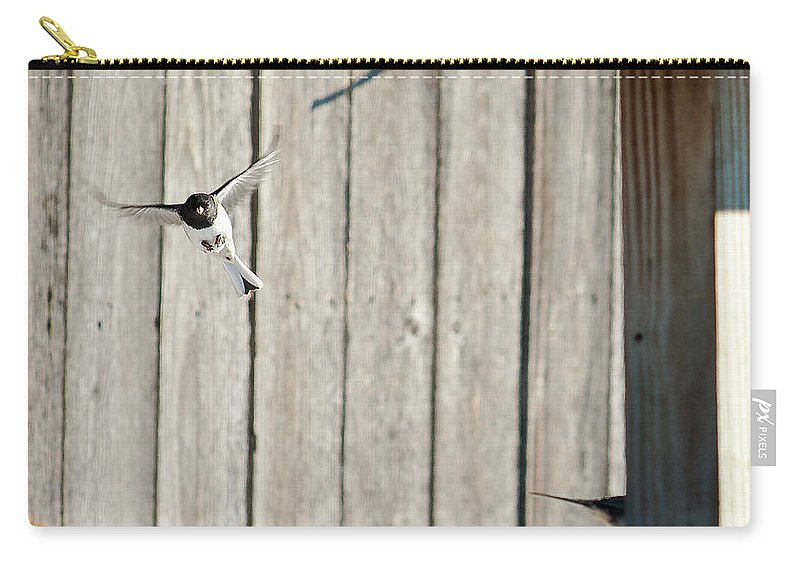 Heron Haven Carry-all Pouch featuring the photograph Incoming by Edward Peterson
