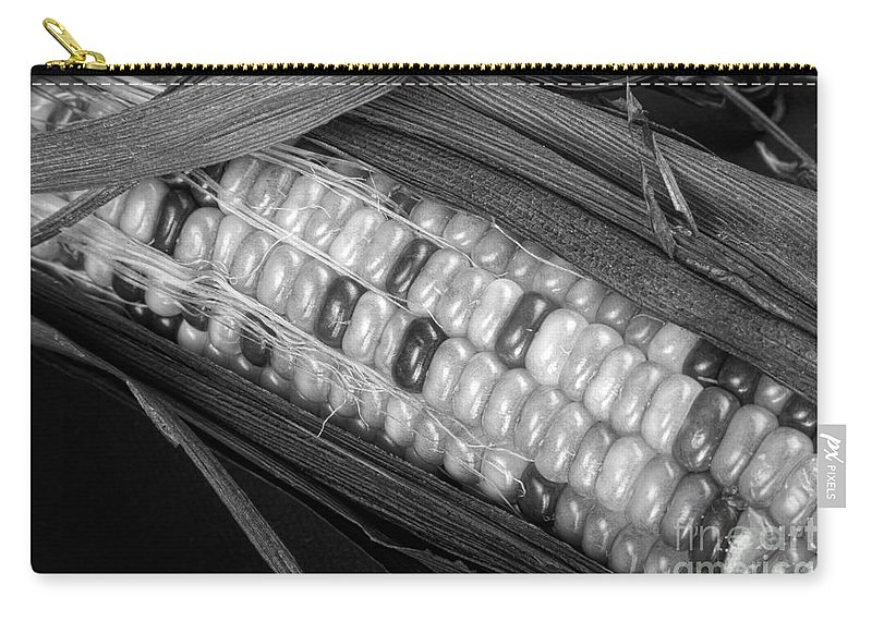 Corn Carry-all Pouch featuring the photograph Indian Corn Black And White by James BO Insogna