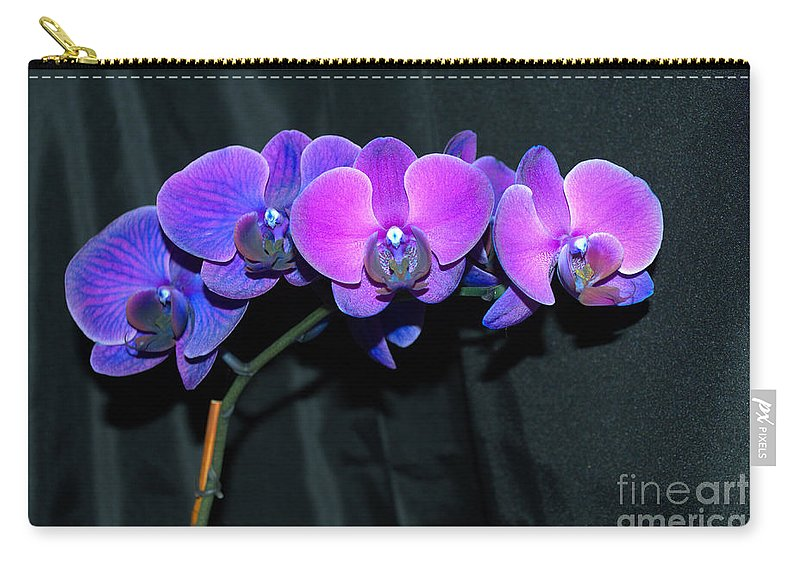 Flowers Carry-all Pouch featuring the photograph Indigo Mystique Orchids by Donna Brown