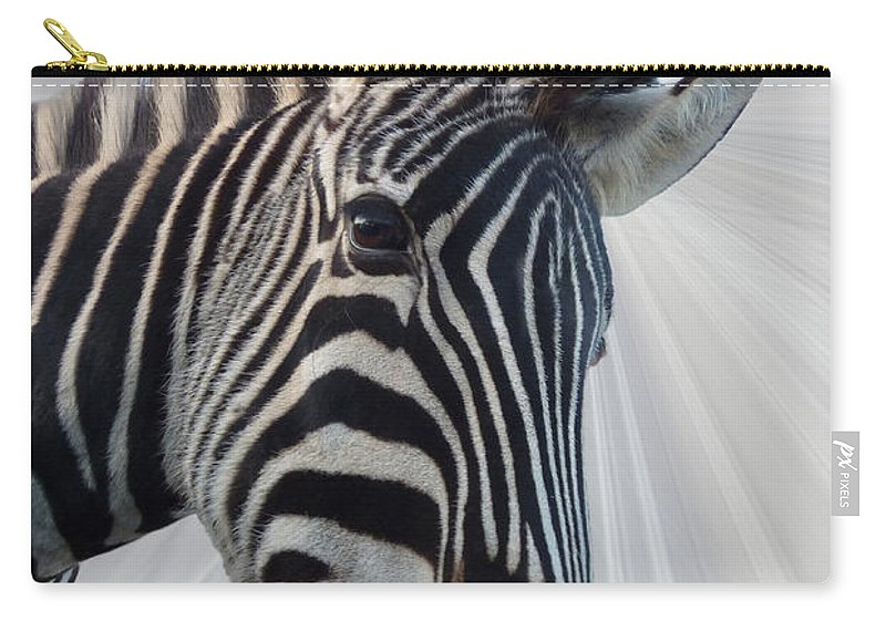 Zebra Carry-all Pouch featuring the photograph Inquisitive by Sheila Laurens