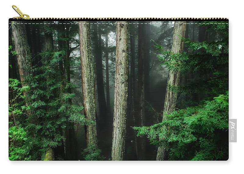Redwood Carry-all Pouch featuring the photograph Into The Wild by Donna Blackhall