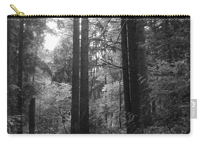 Northwest Carry-all Pouch featuring the photograph Into The Wood by Kathleen Grace
