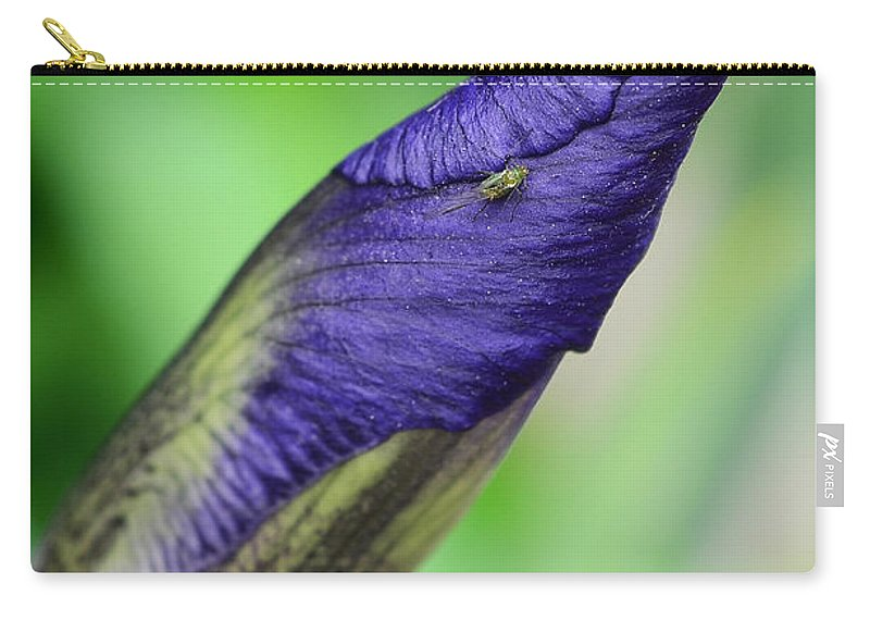 Iris And Friend Carry-all Pouch featuring the photograph Iris And Friend by Lisa Phillips