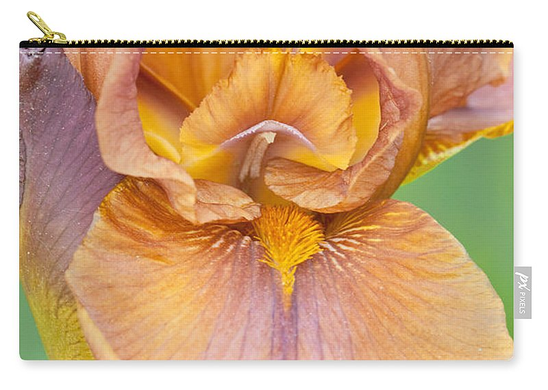 Iris Carry-all Pouch featuring the photograph Iris In Gold by Regina Geoghan