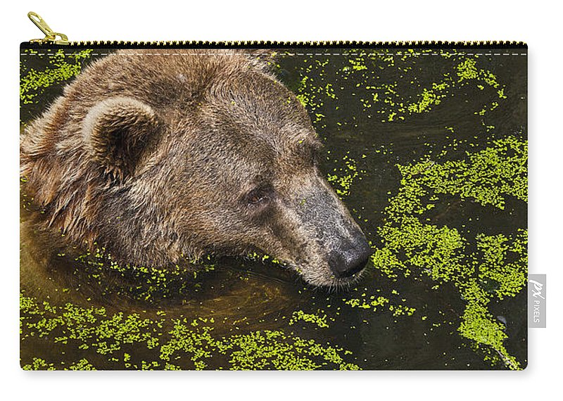 Nature Carry-all Pouch featuring the photograph It's Cool In Here by Heiko Koehrer-Wagner