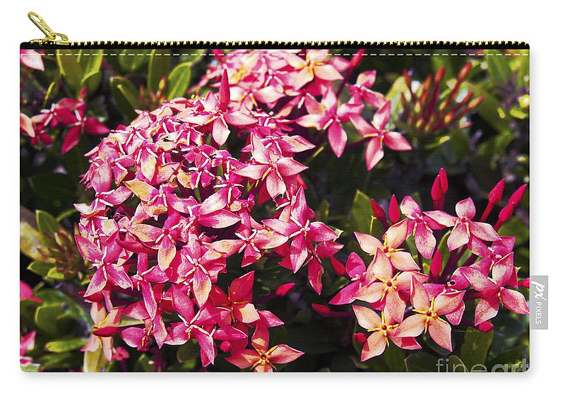 Fine Art Photography Carry-all Pouch featuring the photograph Ixora by Patricia Griffin Brett