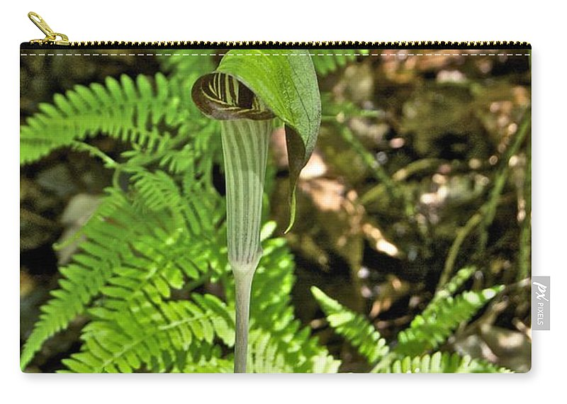 Arisaema Carry-all Pouch featuring the photograph Jack-in The-pulpit_4588 by Michael Peychich