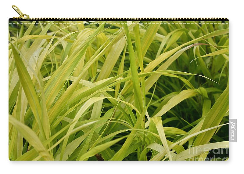 Floral Carry-all Pouch featuring the photograph Japanese Forest Grass by Susan Herber