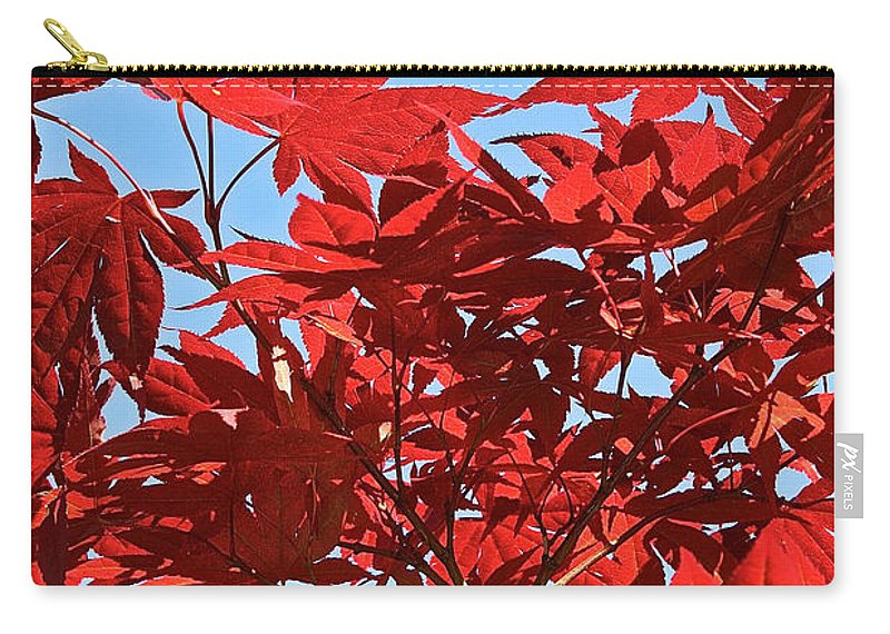 Outdoors Carry-all Pouch featuring the photograph Japanese Maple by Susan Herber