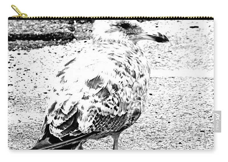 Seagull Carry-all Pouch featuring the photograph Jeffrey Cleverly Disguised As A Road by Lizi Beard-Ward