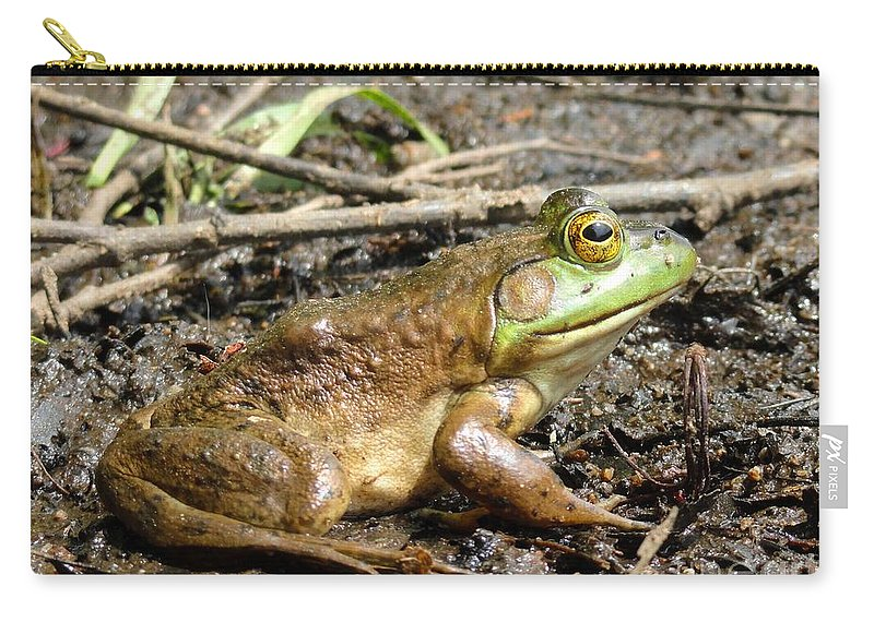 Nature Carry-all Pouch featuring the photograph Jeremiah by Meandering Photography