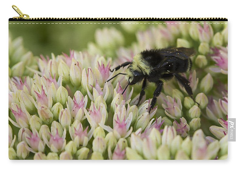 Garden Carry-all Pouch featuring the photograph Joyous Bee by Jean Noren