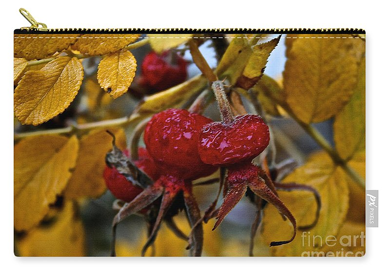 Flower Carry-all Pouch featuring the photograph Juicy Rose Hips by Susan Herber