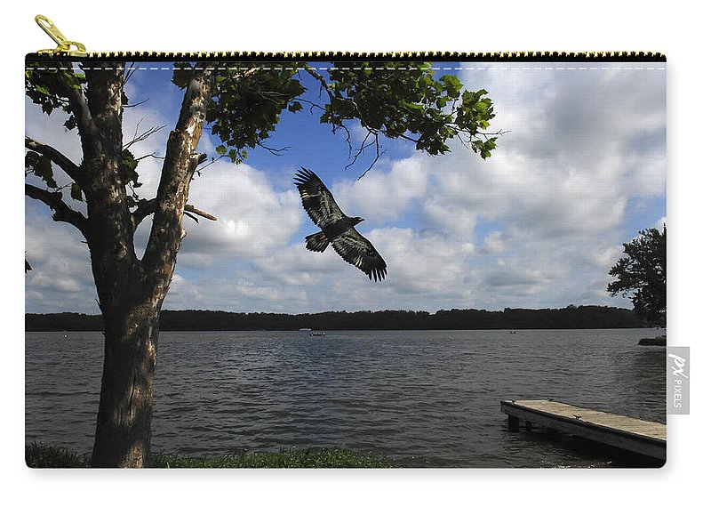 Juvenile Eagle Carry-all Pouch featuring the photograph Junenile Eagle Rocky Fork Lake by Randall Branham