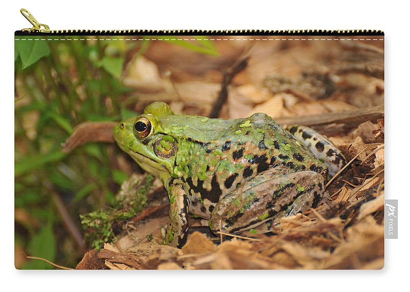 Frog Carry-all Pouch featuring the photograph Just A Frog by Paul Ward