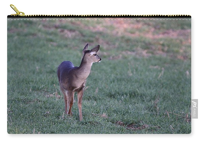 Carry-all Pouch featuring the photograph Just A Little Baby by Travis Truelove