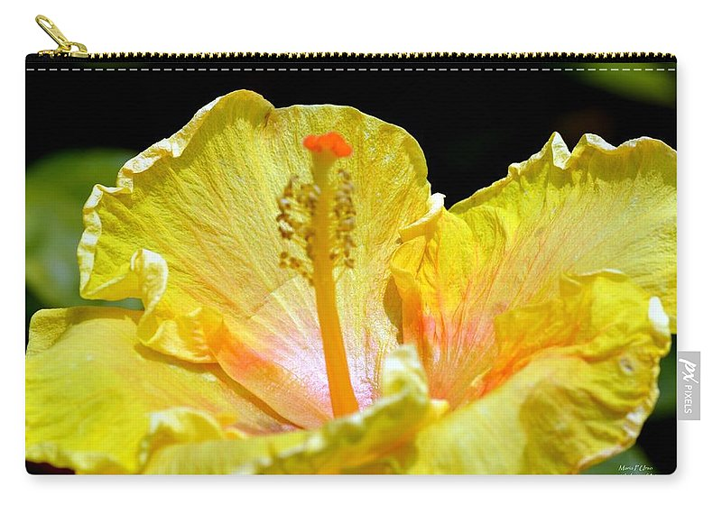 Tad Carry-all Pouch featuring the photograph Just A Tad Of Orange by Maria Urso