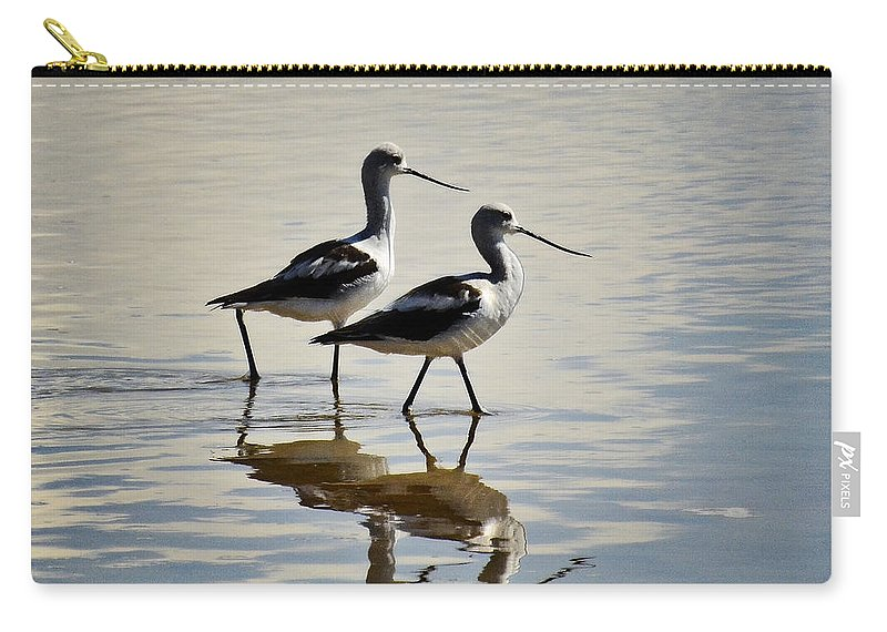 Avocet Carry-all Pouch featuring the photograph Just Call Me Friend by Saija Lehtonen