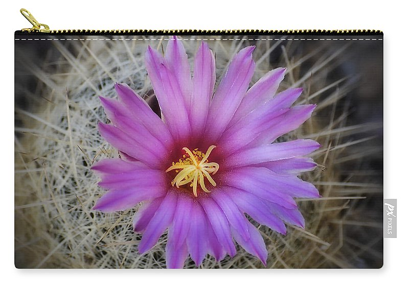 Pink Cactus Flower Carry-all Pouch featuring the photograph Just Pink by Saija Lehtonen