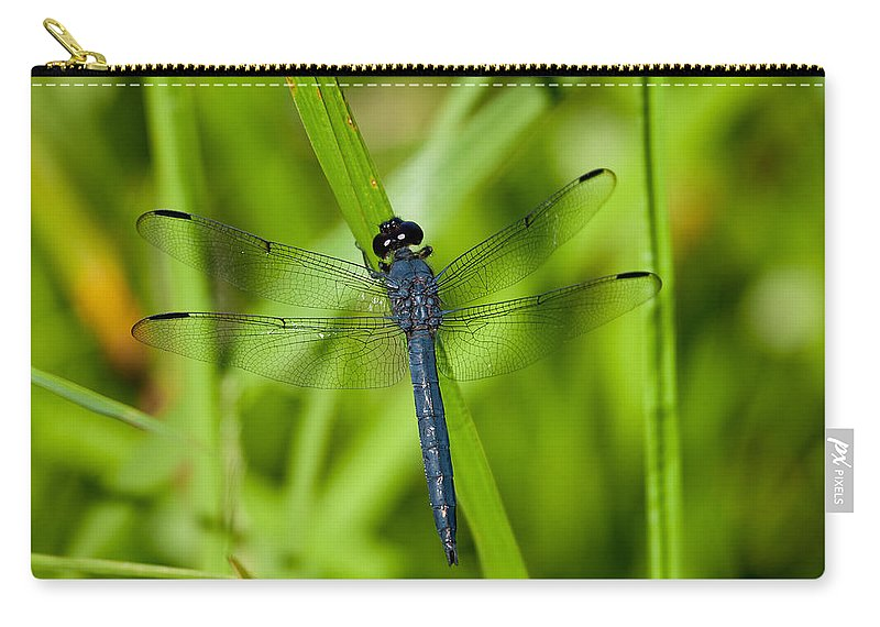 Insect Carry-all Pouch featuring the photograph Just Resting by Karol Livote