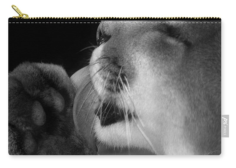 Photograph Carry-all Pouch featuring the photograph Keep It Clean by Vicki Pelham