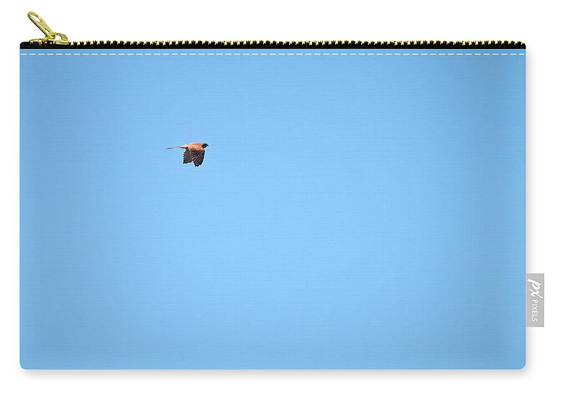 Isosuo Carry-all Pouch featuring the photograph Kestrel by Jouko Lehto