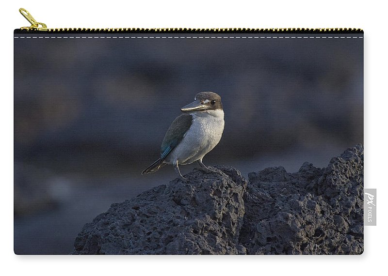 Kingfisher Carry-all Pouch featuring the photograph Kingfisher On The Rocks by Douglas Barnard