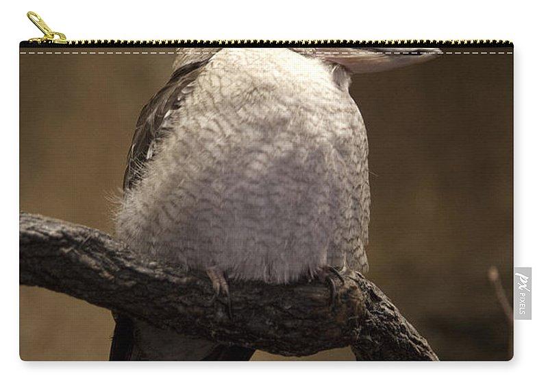 Kookaburra Carry-all Pouch featuring the photograph Kooky The Kookaburra by John Stephens