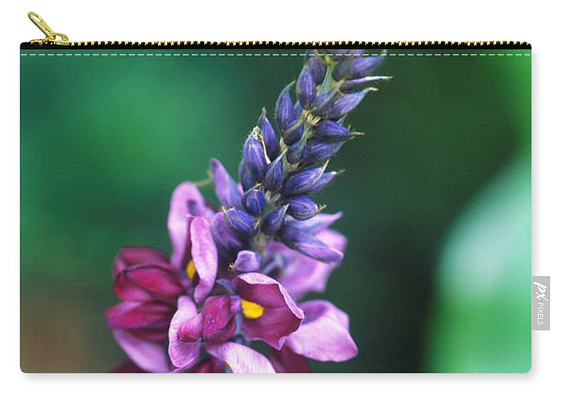 Fabaceae Carry-all Pouch featuring the photograph Kudzu by Science Source
