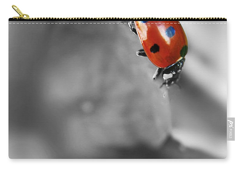 Yhun Suarez Carry-all Pouch featuring the photograph Ladybird On Leaf 1.0 by Yhun Suarez