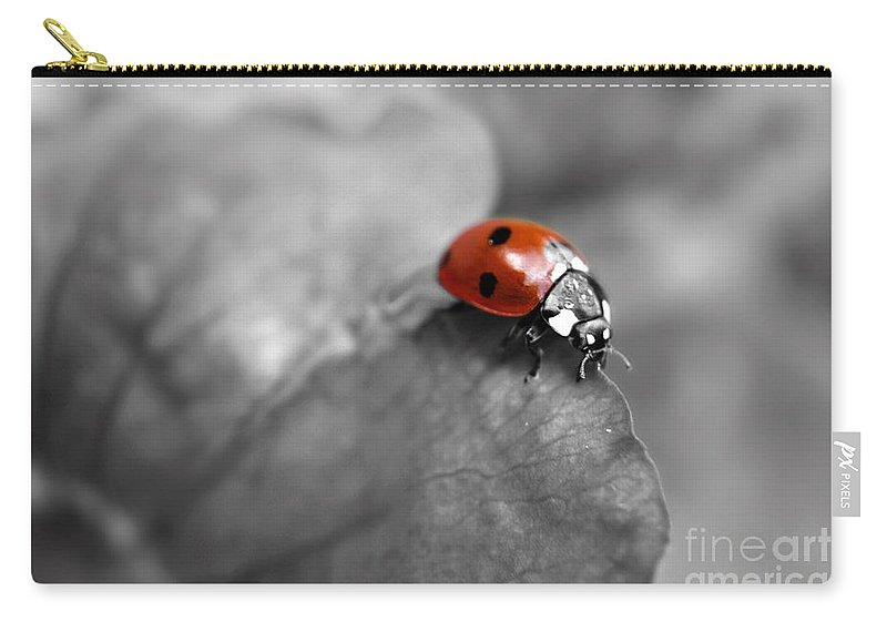Yhun Suarez Carry-all Pouch featuring the photograph Ladybird On Leaf 2.0 by Yhun Suarez