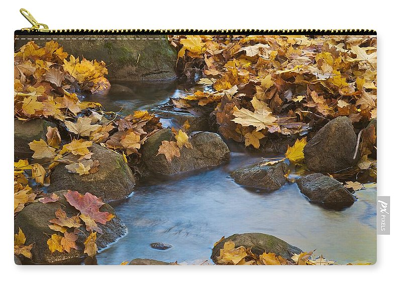 Autumn Carry-all Pouch featuring the photograph Last Signs Of Autumn 0438 by Michael Peychich